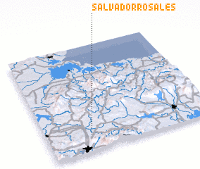 3d view of Salvador Rosales