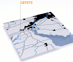 3d view of Cayots