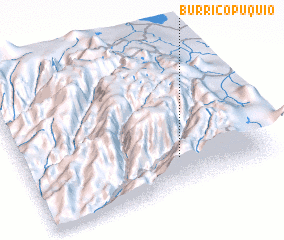 3d view of Burricopuquio