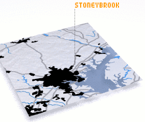 3d view of Stoneybrook