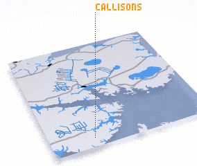 3d view of Callisons