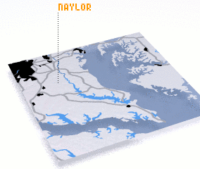 3d view of Naylor
