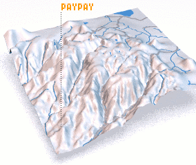 3d view of Pay Pay