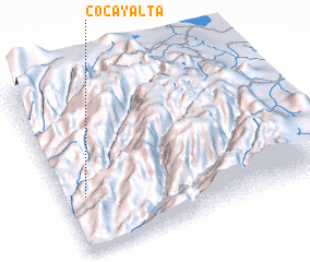 3d view of Cocayalta