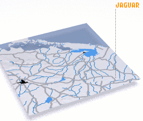 3d view of Jaguar