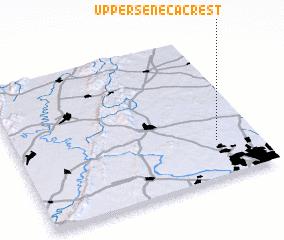 3d view of Upper Seneca Crest