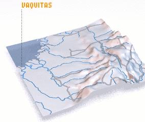 3d view of Vaquitas