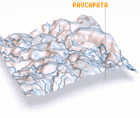 3d view of Paucapata