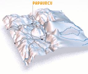 3d view of Papaurcu