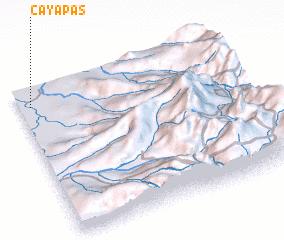 3d view of Cayapas
