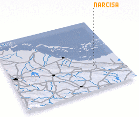 3d view of Narcisa