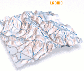 3d view of Ladino