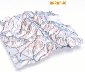 3d view of Naranjo