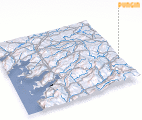3d view of Pungín