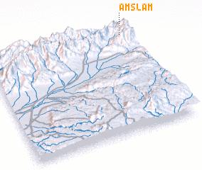 3d view of Amslam
