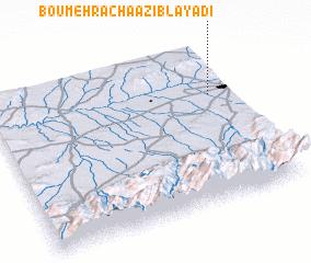 3d view of Bou-Mehracha Azib-Layadi