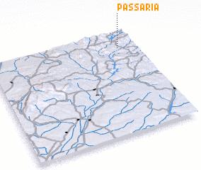 3d view of Passaria