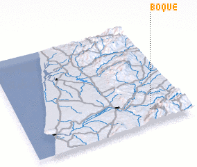 3d view of Boque