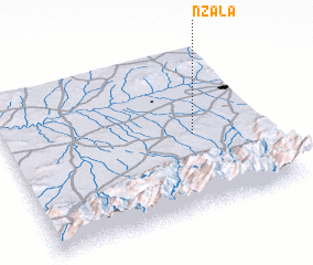 3d view of Nzala