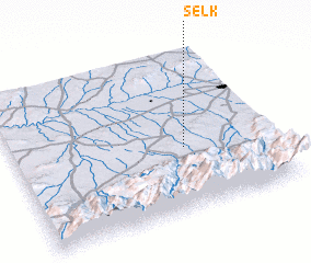 3d view of Selk