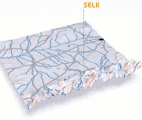 3d view of Selk