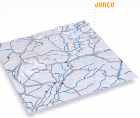 3d view of Junco
