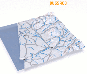 3d view of Bussaco