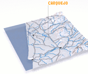 3d view of Carquejo