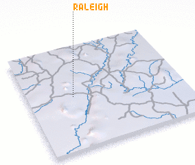 3d view of Raleigh