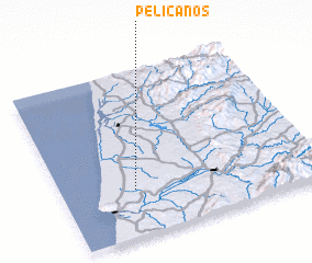 3d view of Pelicanos