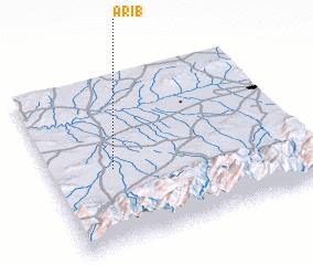 3d view of Arib