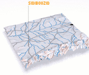 3d view of Sidi Bou Zid