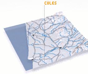3d view of Coles