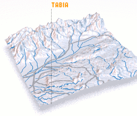 3d view of Tabia