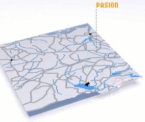 3d view of Pasión