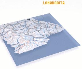 3d view of Loma Bonita
