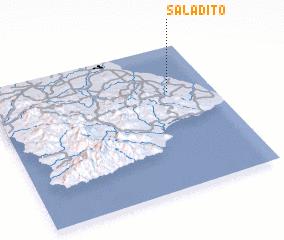 3d view of Saladito