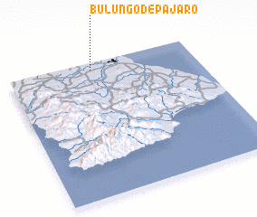 3d view of Bulungo de Pájaro