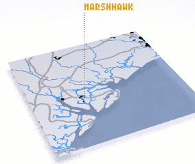 3d view of Marsh Hawk