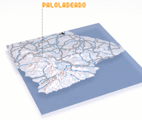 3d view of Palo Ladeado