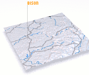 3d view of Bison
