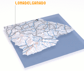 3d view of Loma del Ganado