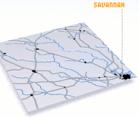 3d view of Savannah