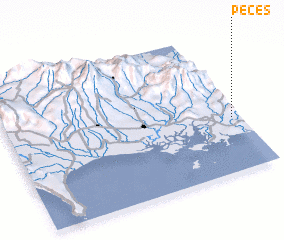 3d view of Peces