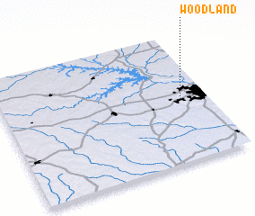 3d view of Woodland