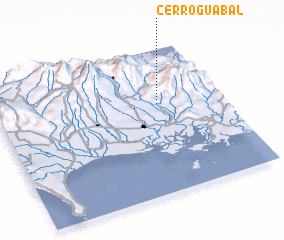 3d view of Cerro Guabal