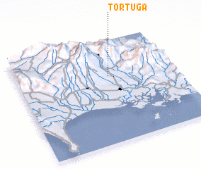3d view of Tortuga