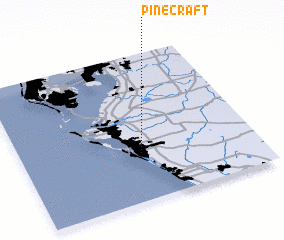 3d view of Pinecraft