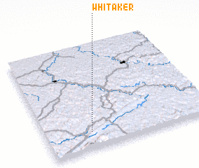 3d view of Whitaker