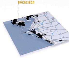 3d view of Boca Ciega